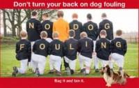 dog foul -2