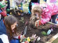 Sunday School children planting their raised bed